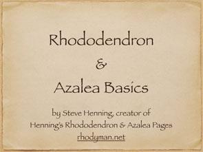 Rhododendron & Azalea Basics